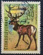 PIA - CECOSLOVACCHIA  - 1966 : Animali Da Cacciare  : Cervo  -  (Yv 1524 )