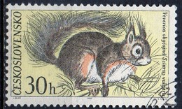 PIA - CECOSLOVACCHIA  - 1967 : Fauna Del Parco Nazionale Dei Monti Tatra  : Scoiattolo  -  (Yv 1591 )