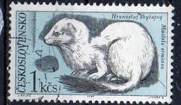 PIA - CECOSLOVACCHIA  - 1967 : Fauna Del Parco Nazionale Dei Monti Tatra  : Ermellino  -  (Yv 1593 )