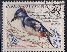 PIA - CECOSLOVACCHIA  - 1959 : Uccelli : Picchio Rosso Maggiore  -  (Yv 1046 )