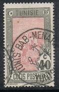 TUNISIE COLIS POSTAL N°5  Superbe Oblitération - Used Stamps