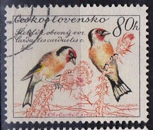 PIA - CECOSLOVACCHIA  - 1959 : Uccelli : Cardellini  -  (Yv 1050 )