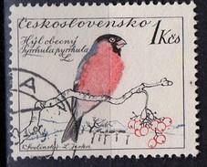 PIA - CECOSLOVACCHIA  - 1959 : Uccelli : Ciuffolotto  -  (Yv 1051 )