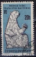 PIA - CECOSLOVACCHIA  - 1962 : 30° Anniversario Dello Zoo Di Praga : Orso Bianco  -  (Yv 1214 )