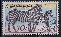 PIA - CECOSLOVACCHIA  - 1976 : Animali Africani : Zebre  -  (Yv 1281 )