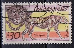 PIA - CECOSLOVACCHIA  - 1976 : Animali Africani : Ghepardo  -  (Yv 1283 )