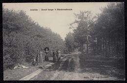 Schilde - Dreef Langs ´t Bladerenbosch 1912 (Geanimeerd) - Zeer Mooie Staat ! - Schilde