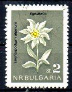 BULGARIE. N°1209 Oblitéré De 1963. Edelweiss.