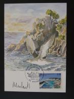 Carte Maximum Card Parc National De Port-Cros Signée De L'artiste 83 Hyères 1997 - Mouettes