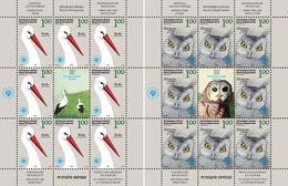 Bosnia Serbia 2008 Europa Nature Protection, Birds, Owls, Fauna, Animals, Mini Sheet MNH