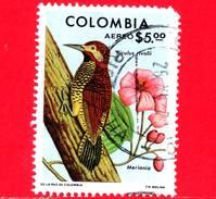 COLOMBIA - Usato - 1977 - Fauna - Uccelli - Picchio - Colaptes Rivolii - 5.00 P. Aerea - Vedi...