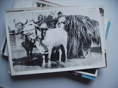 India Unknown Where ? Girl Transport - India