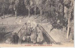 ALGERIE - Retour Du Cimetière Le Vendredi