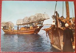RAS AL-KHAIMA - THE FISHERMEN DHOWS - EMIRATES UAE - Emirati Arabi Uniti