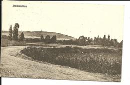 Cpa , DAMMVILLERS ,Feldpost 22.04.1917  (158) - Damvillers