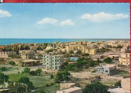 LATTAKIA GENERAL VIEW SYRIA  POSTCARD UNUSED