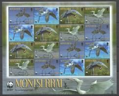 VV24 MONTSERRAT WWF FAUNA BIRDS REDDISH EGRET 1SH MNH