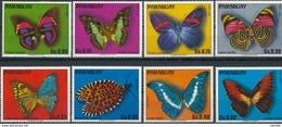 Paraguay  Butterflies