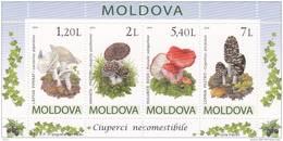 MOLDOVA  MOLDAVIE  MOLDAWIEN MOLDAU ,  Mushrooms , 2010 , Blook  , MNH - Moldova