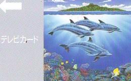 Télécarte Japon * DAUPHIN * DOLPHIN (861) Japan () Phonecard * DELPHIN * GOLFINO * DOLFIJN * - Dolfijnen