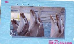 Télécarte Japon * DAUPHIN * DOLPHIN (867) Japan () Phonecard * DELPHIN * GOLFINO * DOLFIJN * - Dolphins