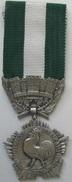 Médaille Civile Française Collectivités Locales (v) - France