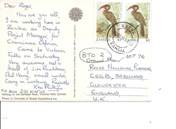 Zambie -Oiseaux ( CP De 1988 De Kafue  Vers La Grande-Bretagne à Voir) - Zambia (1965-...)