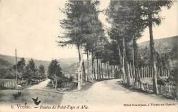 Vresse - Sur-Semois -  Route De Petit-Fays Et Alle - Vresse-sur-Semois