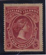 Falkland  Regina  Vittoria 1898  Alto Valore  5s Yv 17  MLH - Falkland
