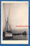 CPA Photo - Port à Situer - BRETAGNE - Beau Bateau De Pêche Immatriculation D 3438 - Douarnenez Ou Environs ? - Fischerei