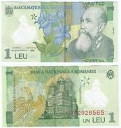 Rumanía - Romania 1 Leu 2005 (2012) Polimero Pick 117.g Ref 900 - Rumania