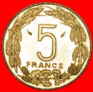 § FRANCE: CENTRAL AFRICA ★ 5 FRANCS CFA 1983 MINT LUSTER! LOW START★ NO RESERVE! - Monnaies