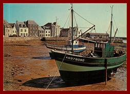 Ile De Sein , Le Port à Marée Basse   ( Scan Recto Et Verso ) - Ile De Sein
