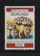 Burundi 1992, Mushroom, Minr 1755, Vfu. Cv 6 Euro