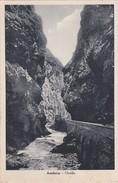 Cartolina - Postcard - BERGAMO -   AMBRIA - ORRIDO - Bergamo