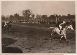 Hippisme Photo New York Times AUTEUIL 9/4/39 Prix Président République Cheval UN GRISARD Vicomte De RIVAUD Jockey BATES - Equitation