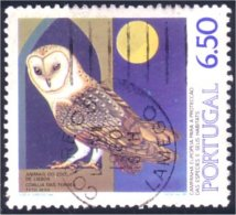 742 Portugal Chouette Hibou Eule Owl (P-POR-95)