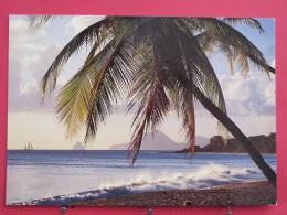 Martinique - Les Salines - Excellent état - Scans Recto-verso - Other