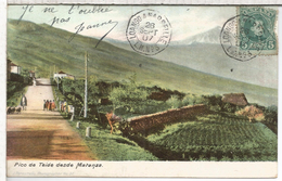 ALFONSO XIII  TARJETA POSTAL TEIDE TENERIFE CANARIAS CON MAT NAVAL FRANCES LINEA LOANGO A MARSEILLE L..M.NUM.3 1907
