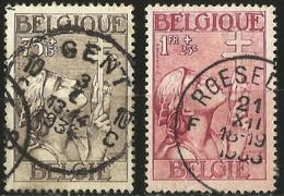 Belgique - YT 380 Et 381 Oblitérés - Usados