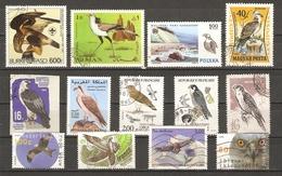 Rapaces - Petit Lot De 13 Timbres - Oiseaux De Proie - Aigle - Faucon - Buse - Serpentaire - Vrac (max 999 Timbres)