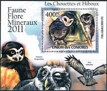 Bloc Sheet Oiseaux Hiboux Birds Owls Neufs MNH ** Comores  2011