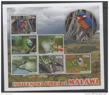 MALAWI , 2016, MNH, BIRDS, INDIGENOUS BIRDS OF MALAWI, KINGFISHERS, SHEETLET + 7 S/SHEETS, SUPERB OFFICIAL ISSUE, SCARCE