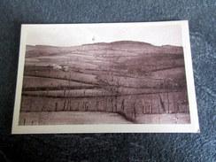 CPA - Environs De St MAMERT (69) - La Mont De La Croix De Fufret - France