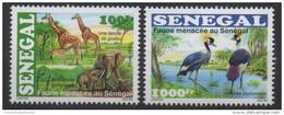 Sénégal 2015 Faune Menacée Threatened Fauna éléphants Girafes Giraffen Elefanten Birds Oiseaux Vögel Elephants Giraffe
