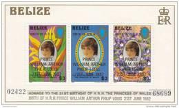 Belice Hb 41 - Belice (1973-...)