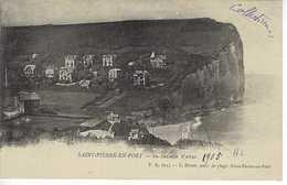 CPA Précurseur Saint Pierre En Port La Falaise D'Aval F.A. 6015 Dutot 1905 - Fécamp