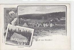 Gruss Aus Brenden - Oesterr.Frankatur - Sign. - 1912       (A-37-150106) - Tschechische Republik