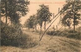 Herentals - Chemin Dans Les Bruyères - Herentals