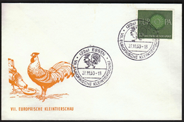 Germany Essen 1960 / European Small Animals Exhibition / Rooster / VII Europäische Kleintierschau